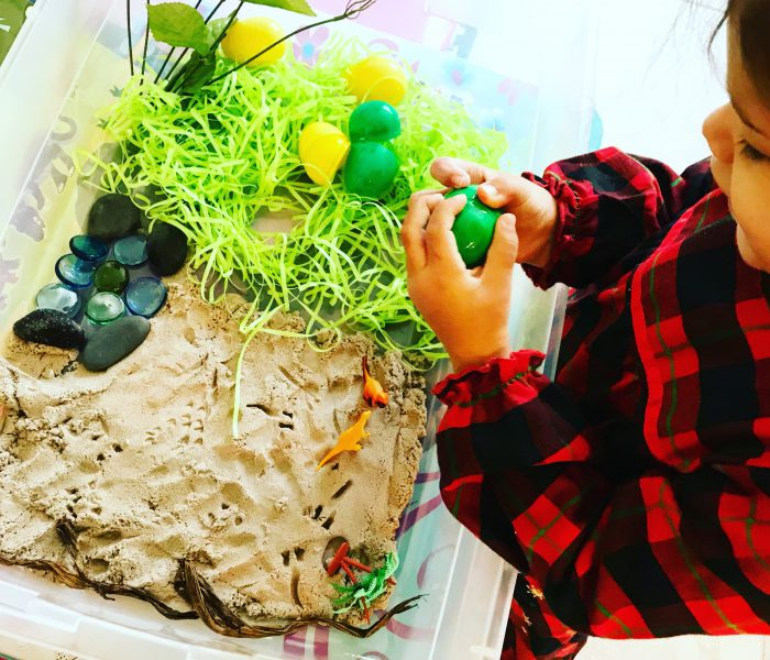 The Importance Of Sensory Bins