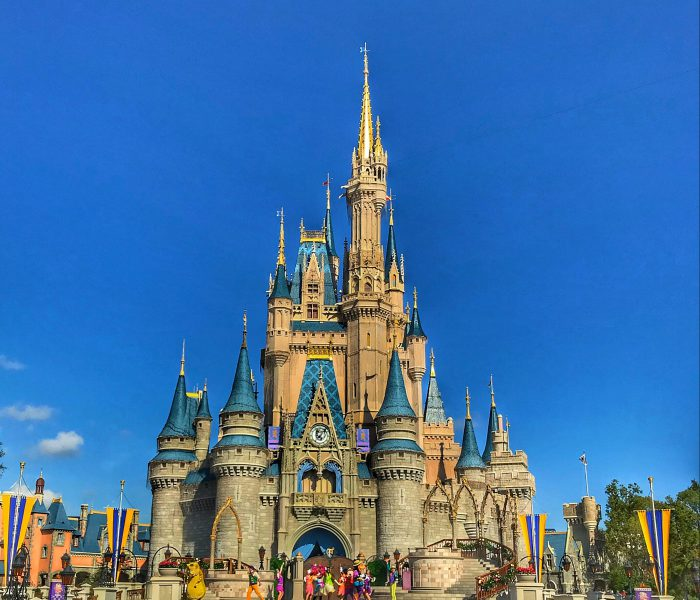 Top Magic Kingdom Picks for Small Children