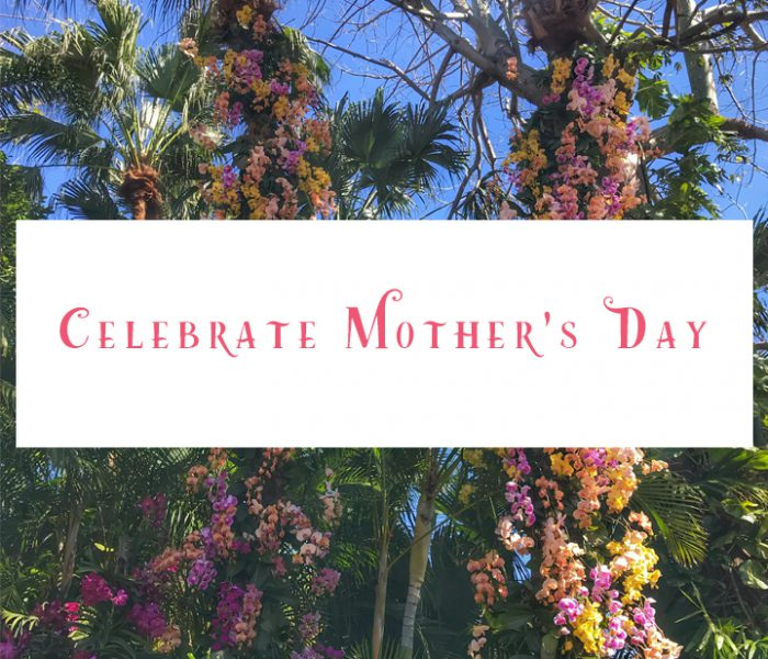Celebrate Mom with Brunch