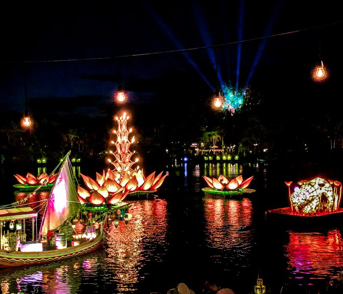 Rivers of Light Dessert Party at Disney's Animal Kingdom