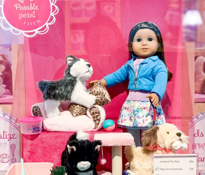 Our Morning At The American Girl Store